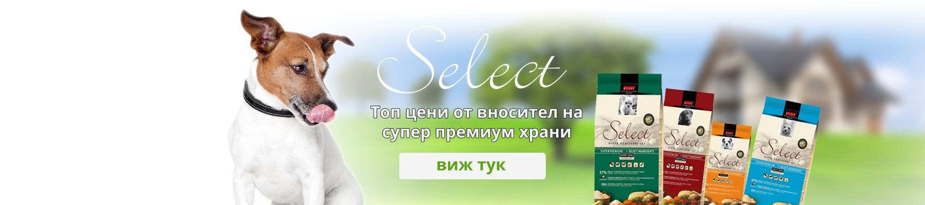 slide-select-food